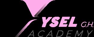 Academia Online de YSEL GH